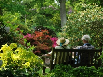 mature-couple-on-bench-in-garden